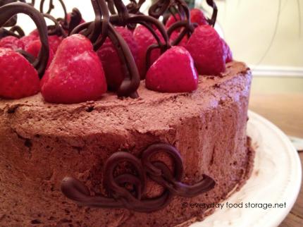 chocolate-angel-food-cake-430x322.png