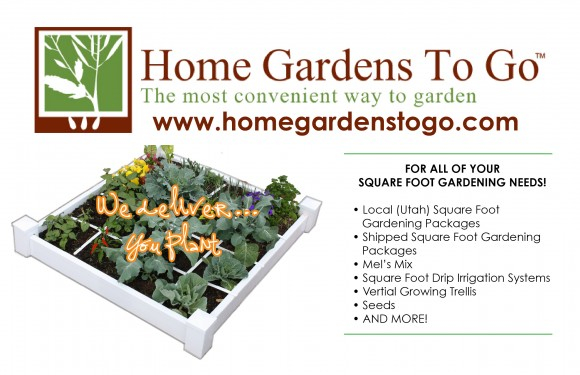 Square Foot Gardening 101 Secrets for a Successful Garden Plan – Planning A Square Foot Garden