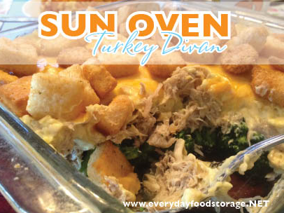 Sun oven turkey divan store this not that for Divan turkey
