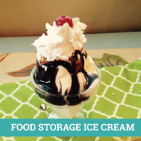 FOOD STORAGE ICE CREAM REC
