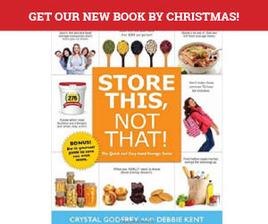 BOOK BY CHRISTMAS USE